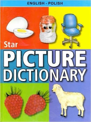 Cambridge Polish English Dictionary Translate from Polish to English